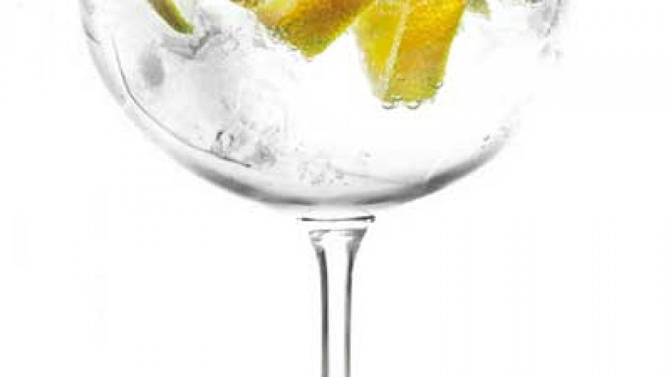Gin Tonic Cocktail1